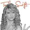 Taylor Swift Stay beautiful Intro