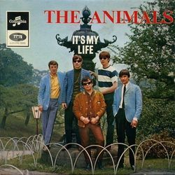 The Animals bass tabs for Its my life