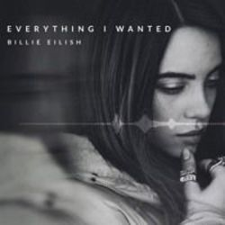 Billie Eilish guitar chords for Everything i wanted (Ver. 3)