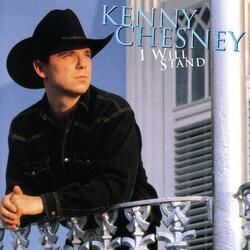 Kenny Chesney tabs for Steamy windows