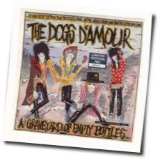 The Dogs Damour tabs and guitar chords