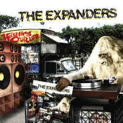 The Expanders tabs and guitar chords