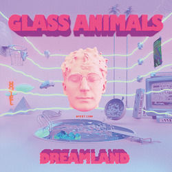 Glass Animals tabs for Heat waves