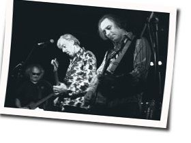 Robyn Hitchcock tabs and guitar chords