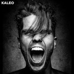 Kaleo guitar tabs for I want more
