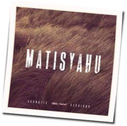 Matisyahu guitar chords for Live like a warrior acoustic