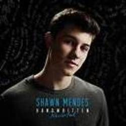 Shawn Mendes guitar chords for Dont want your love