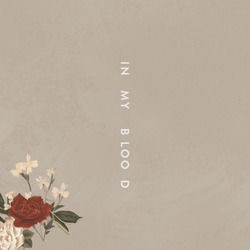 Shawn Mendes guitar chords for In my blood