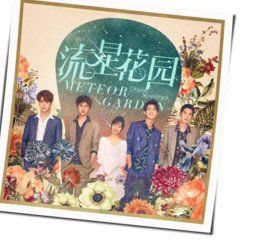 Meteor Garden The Love You Want Night Version Guitar Chords By