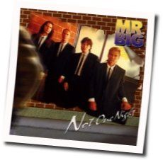 Mr. Big chords for Not one night