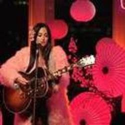 Kacey Musgraves guitar chords for Love is a wild thing (Ver. 2)