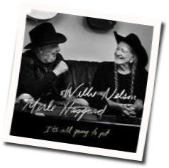 Willie Nelson guitar chords for Its all going to pot