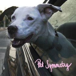 Pet Symmetry bass tabs for A detailed and poetic physical threat