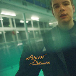 Rex Orange County guitar chords for 4 seasons