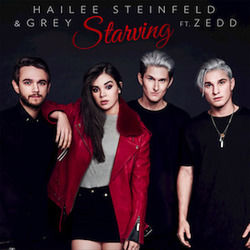 Hailee Steinfeld guitar chords for Starving (Ver. 2)
