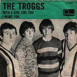 The Troggs bass tabs for With a girl like you