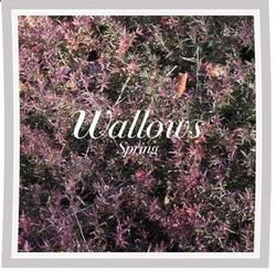 Wallows tabs for Ground
