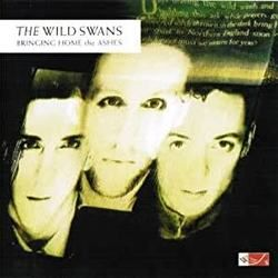 The Wild Swans guitar tabs for Northern england
