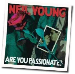 Neil Young tabs for Are you passionate